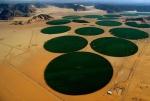 Cercuri de iragatie in Iordania
