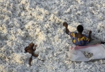 La strangerea bumbacului, Burchina Faso
