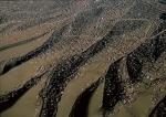 Iurte la perifieria Ulan-Bator, Mongolia